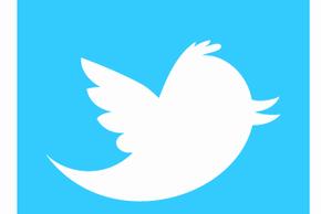 Twitter 290